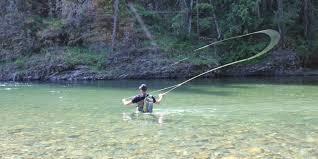 flying fishing image